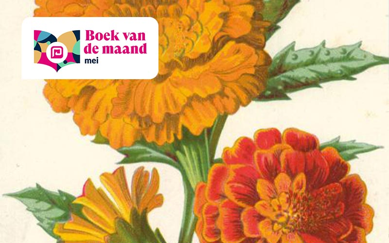 Boek van de maand mei: <i>Het verre veld</i>